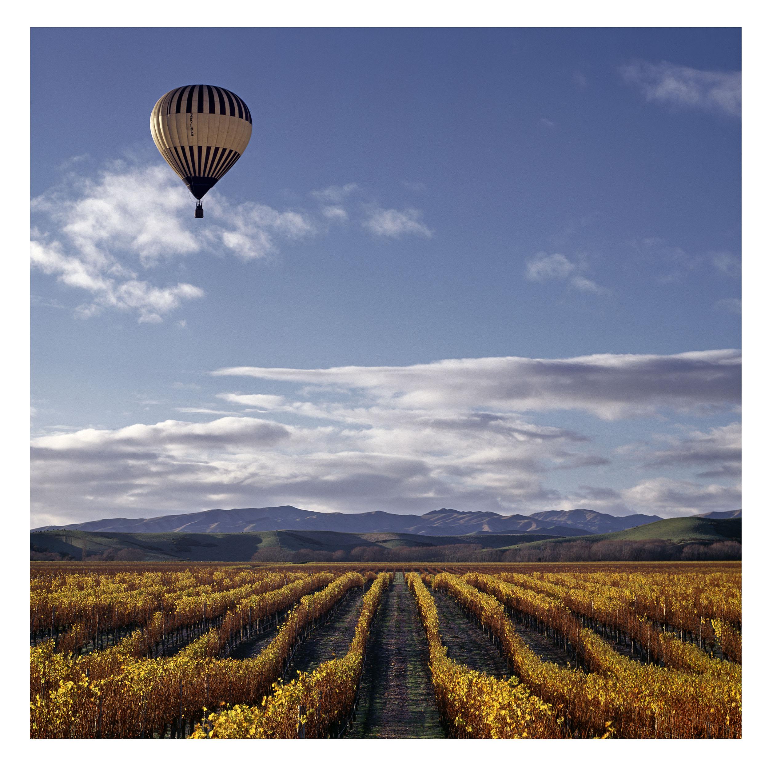 T8 Balloon.jpg