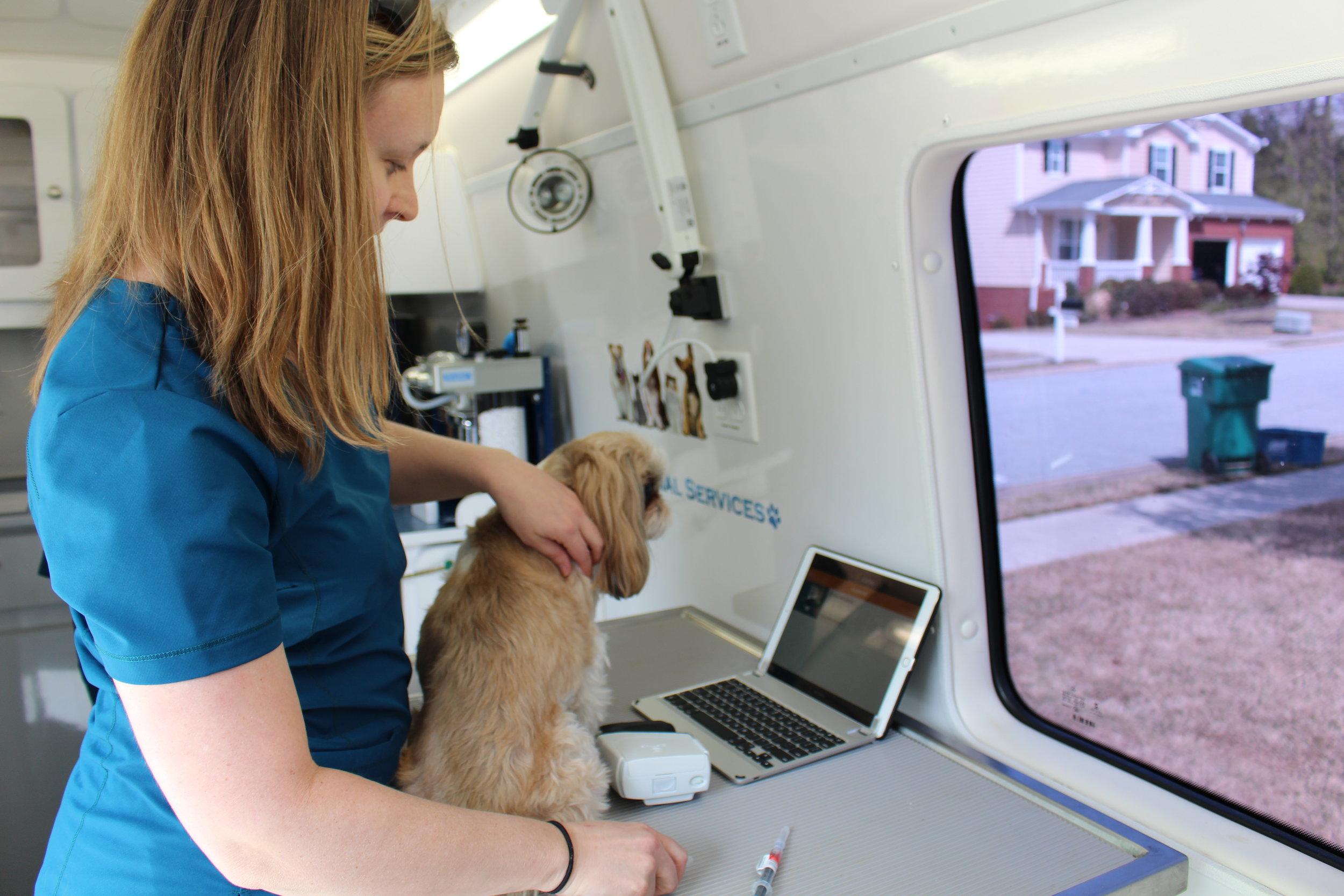 Mobile Vet Clinic.JPG
