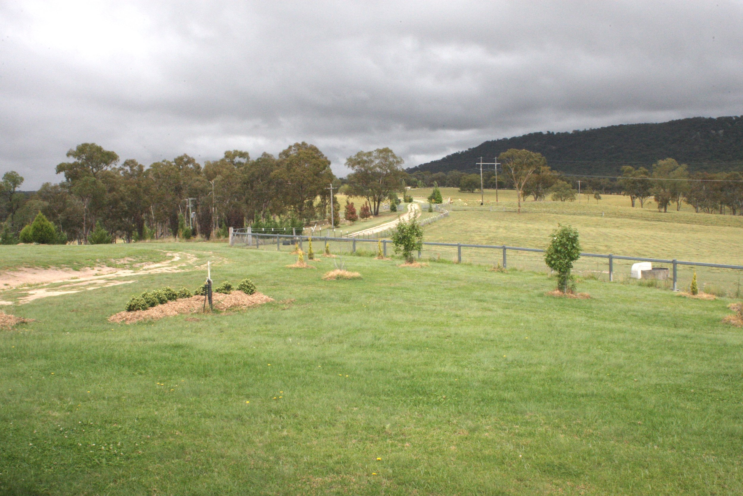 View to the East, garden and paddocks