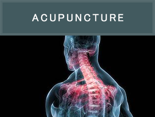 Dr. Paula Radovich is a licensed acupuncturist and uses acupuncture to treat a wide variety of complaints, conditions and musculoskeletal dysfunctions, including but certainly not limited to, lower back pain, migraines, knee pain and neck pain.