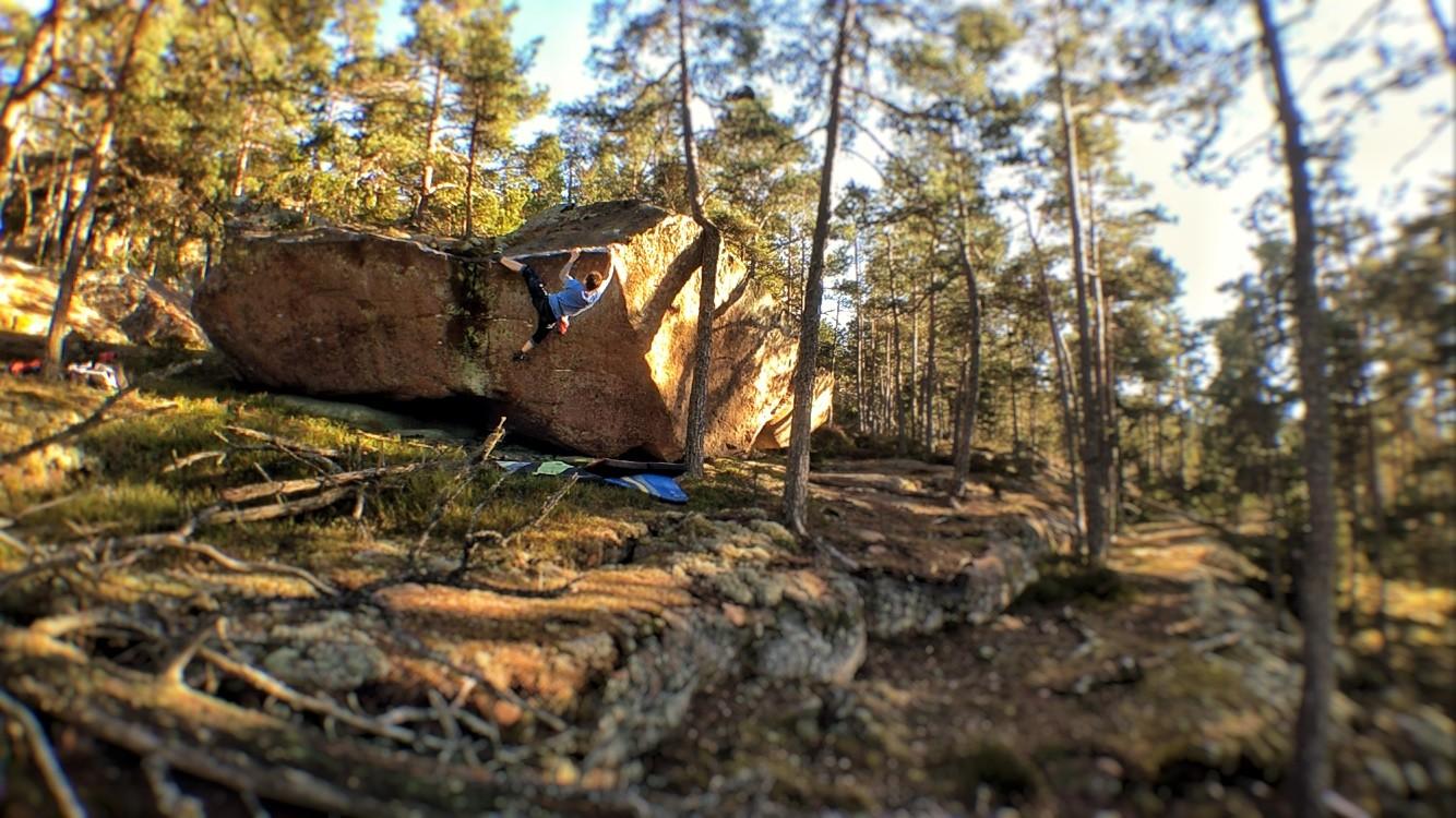 Photo by Anssi Laatikainen.