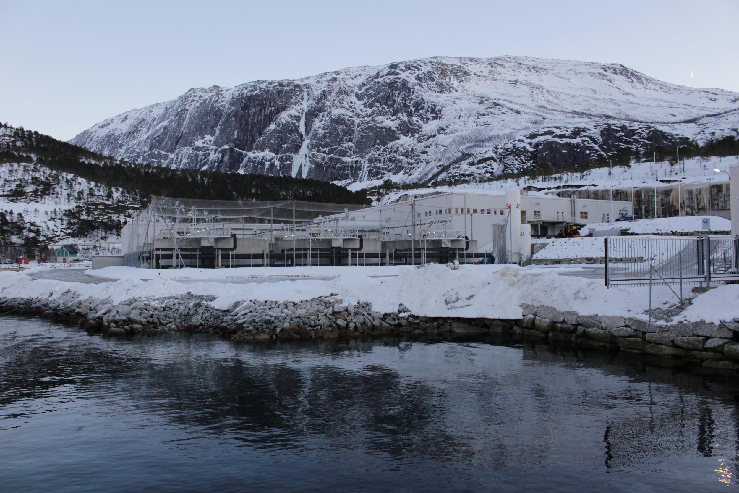 Nordlaks Smolt in Mørsvika, Sørfold.
