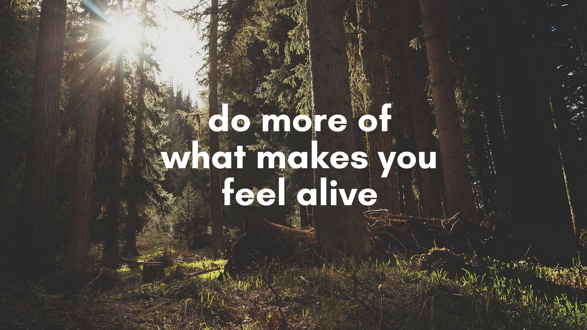 Type 9 - Do More of What Makes You Feel Alive