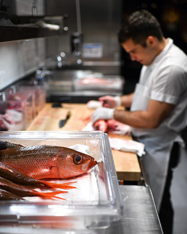 Fernando breaking down some beautiful Pacific Ruby Fish to be enjoyed in a broth of salted plums and perilla leaves