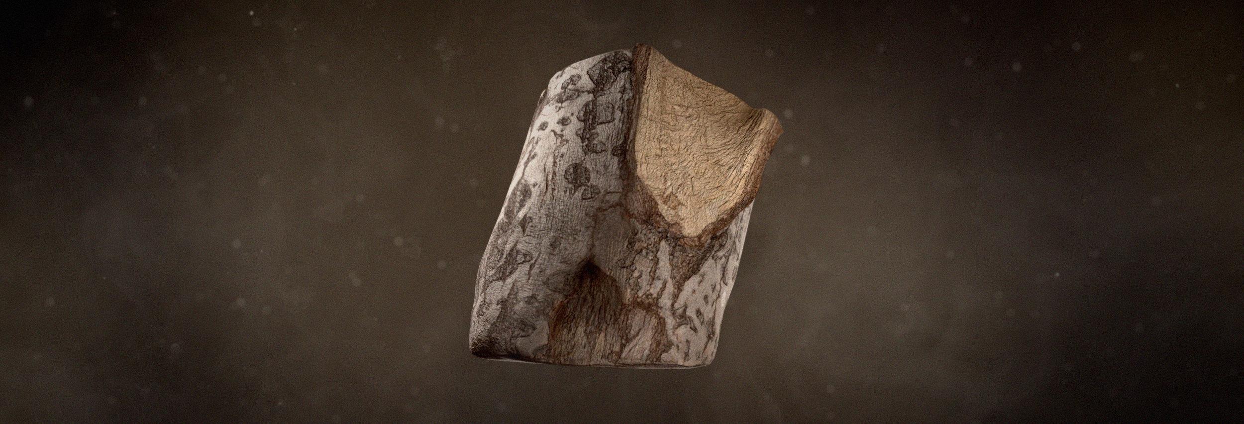 Wood Nature.jpg
