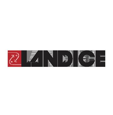 landice.png