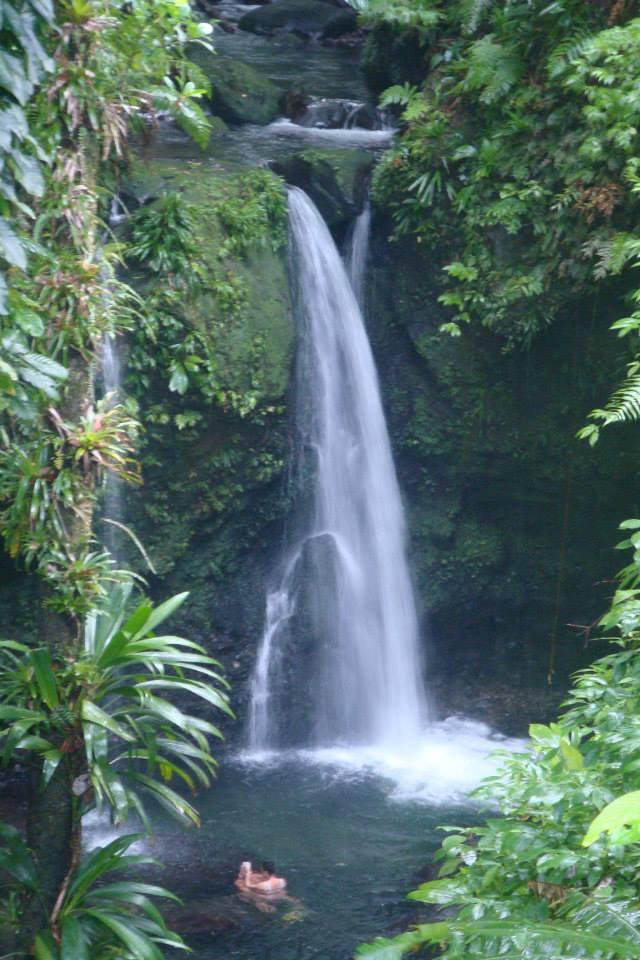 Dominica_Hibiscus_Falls.jpg