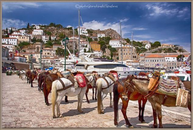 Hydra-Island-Athens-1-Day-Cruise Eseln.jpg