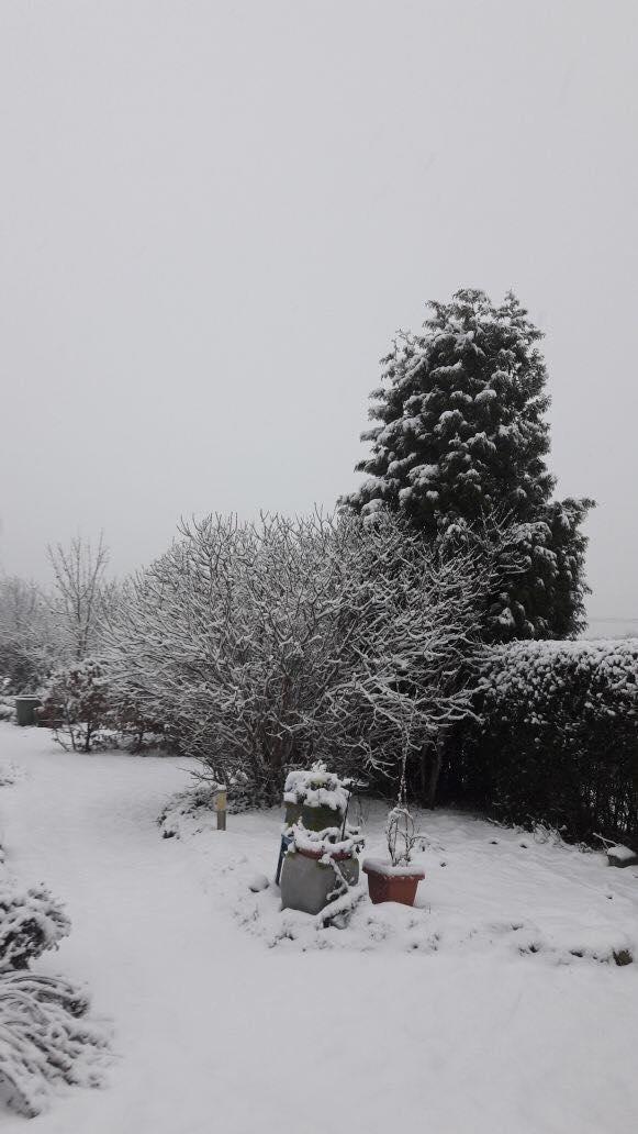 Schneeschatz3.jpg