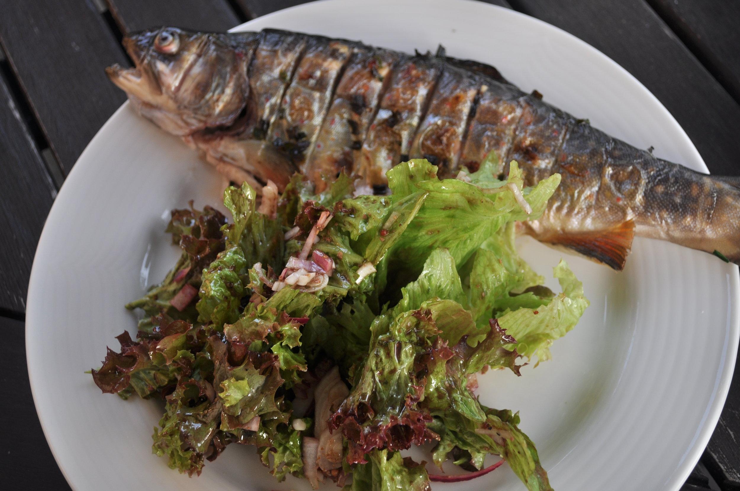 …mit frisch geernteten Salat