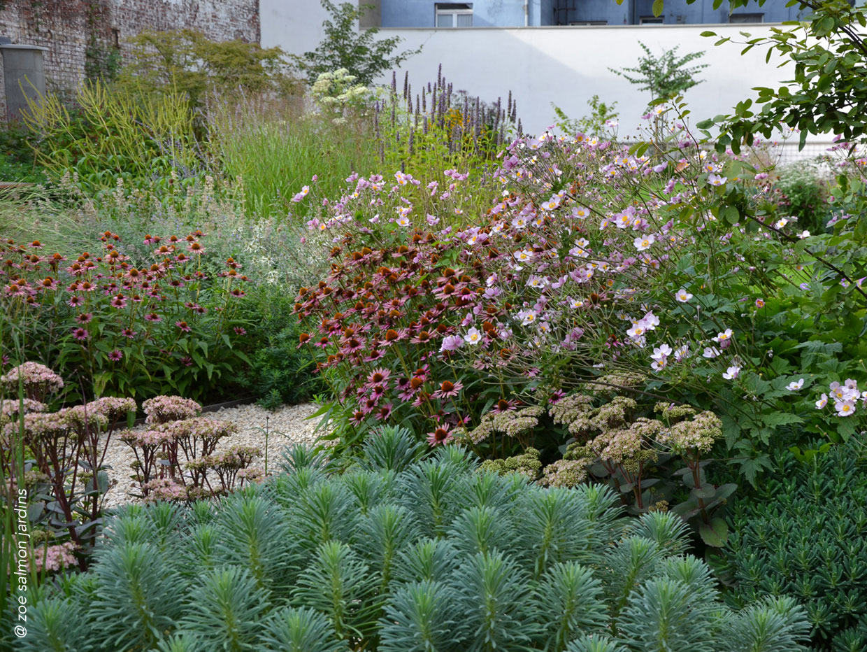 Projet pour une habitation collective désireuse de changer sa grande pelouse commune en jardin naturel dans lequel la biodiversité retrouve sa place.