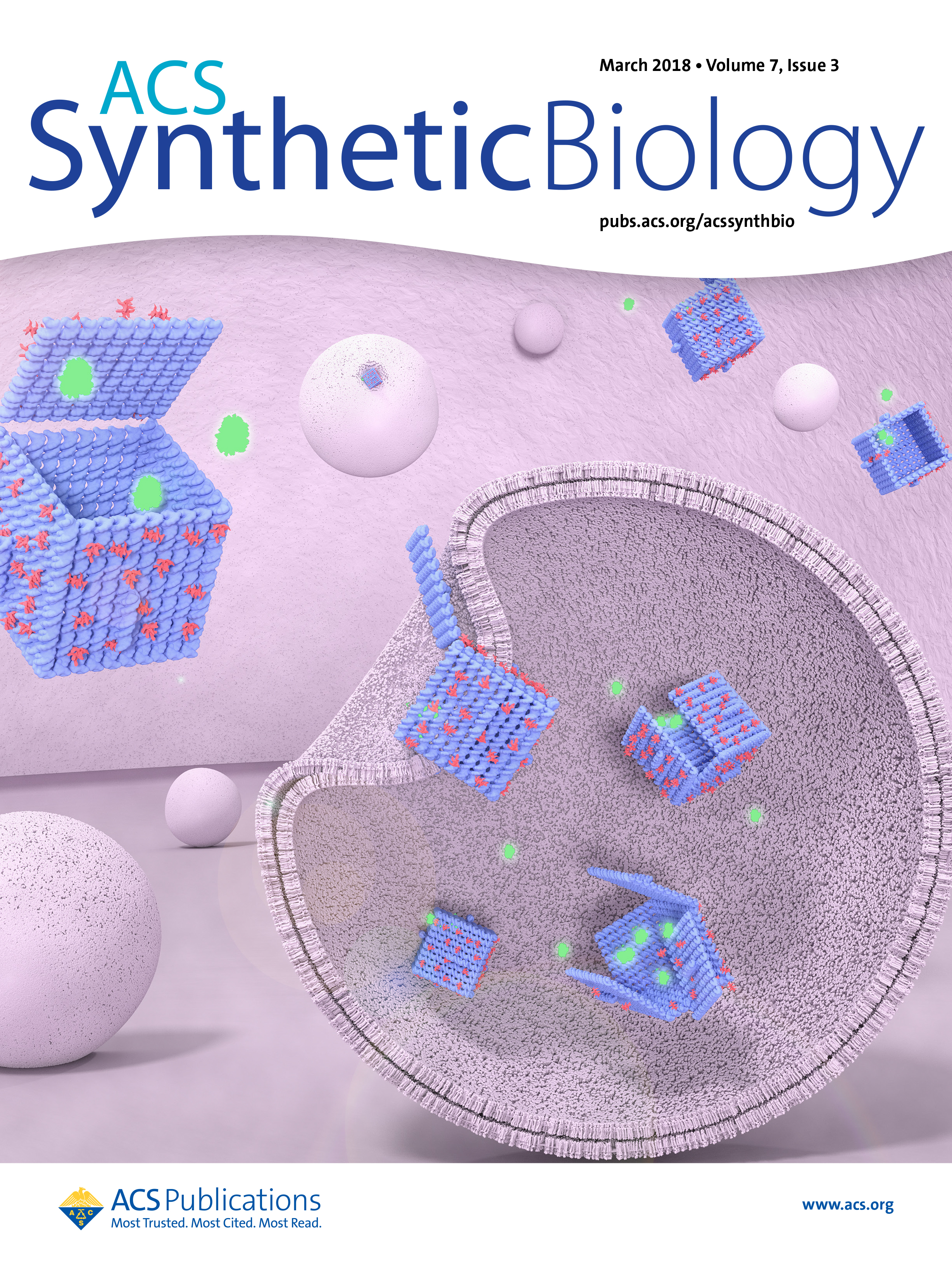 ACS Synthetic Biology Cover: March 2018 Issue - DNA origami viruses inside endosomes. Upon escaping endosomes, the viruses release green fluorescent protein (GFP) inside the cell. The background of the Figure denotes an intracellular environment, with spheres depicting endosomes, blue boxes DNA origami and green particles  GFP.