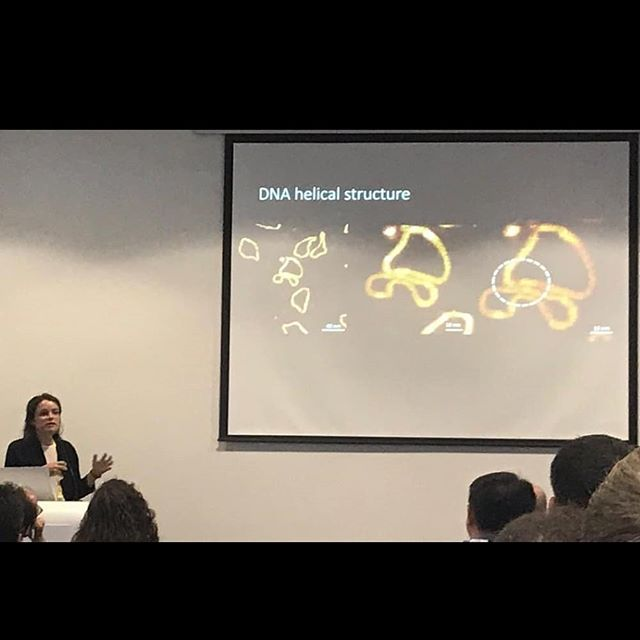 On the 3rd of July, we attended the Microscience Microscopy Congress 2019 (#mmc2019) held in Manchester.  1) Alice presenting her talk 'Untangling DNA, One Molecule at a Time' during the SPM of Soft and Biological Matter session  2) Kavit presenting his talk on Supercoiled DNA - Topoisomerase Interactions during the SPM: A tool for Pharmaceutical and Applied Biological/Biomedical Research  #mmc2019 #manchester #microscopy #conference #research #biophysics #stem #dna #structure #topoisomerases #cancer #amr