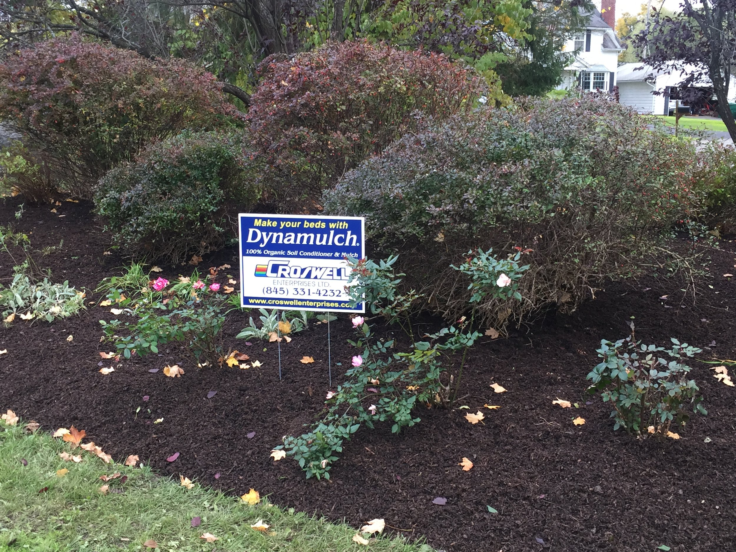 Ribbon Park, Town of HurleyFall 2018 - We donated 6 yards of Dynamulch to enhance the garden beds in front of Town Hall. We are proud to support the Hurley Heritage Society in this endeavor.