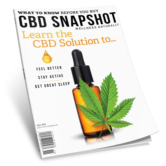 CBD Snapshot cover Fall 2019 Issue 3 Olewitz