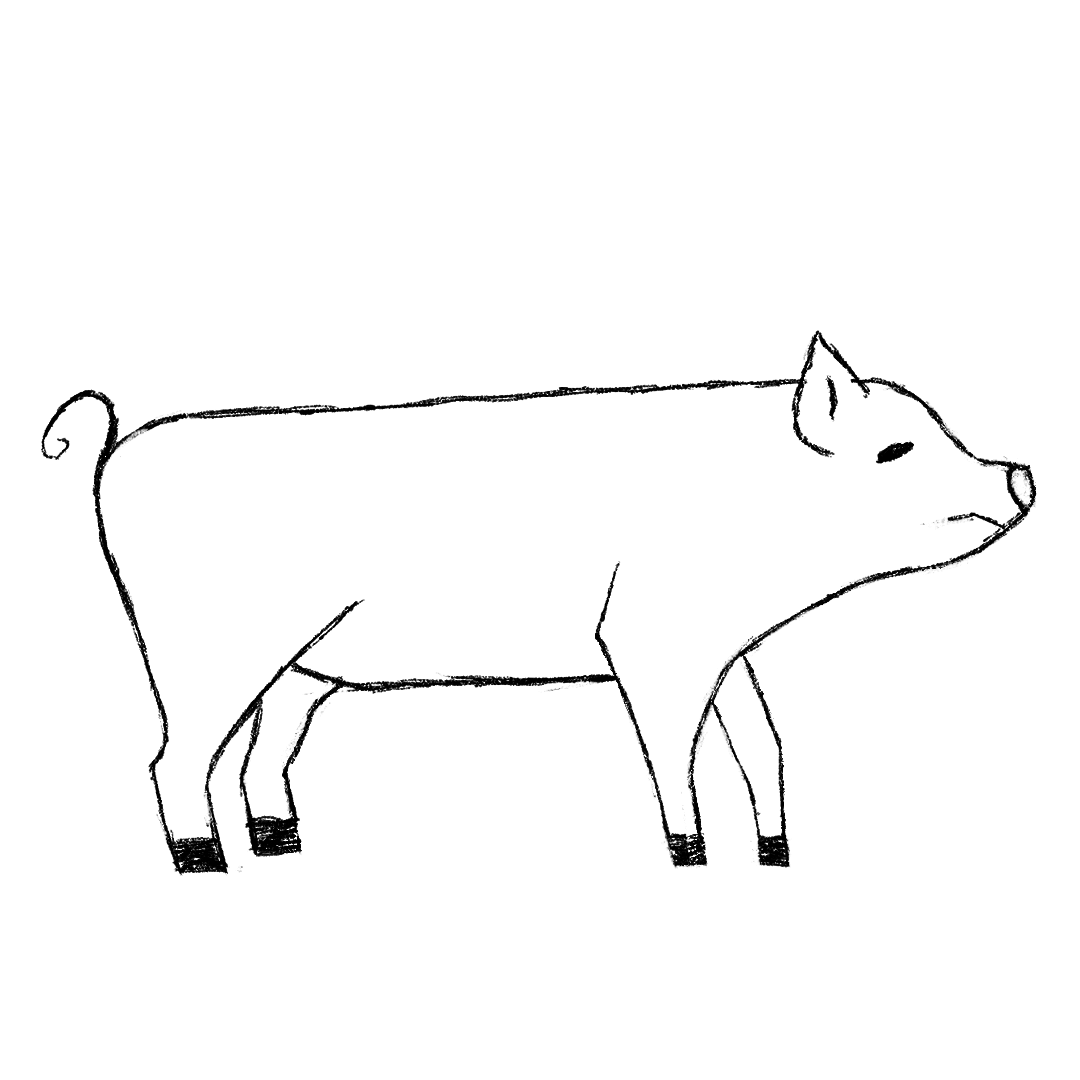 pigy.png