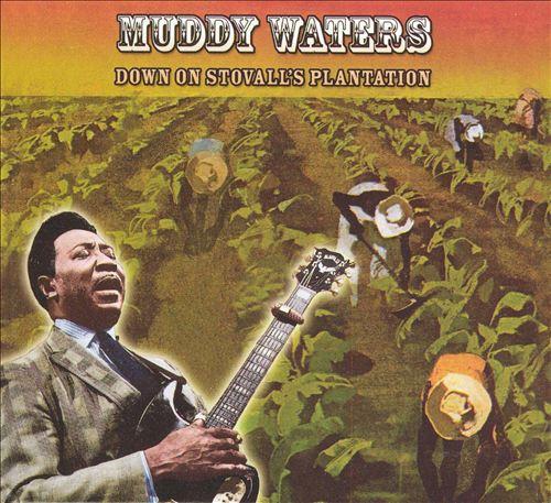 Music education/muddy waters