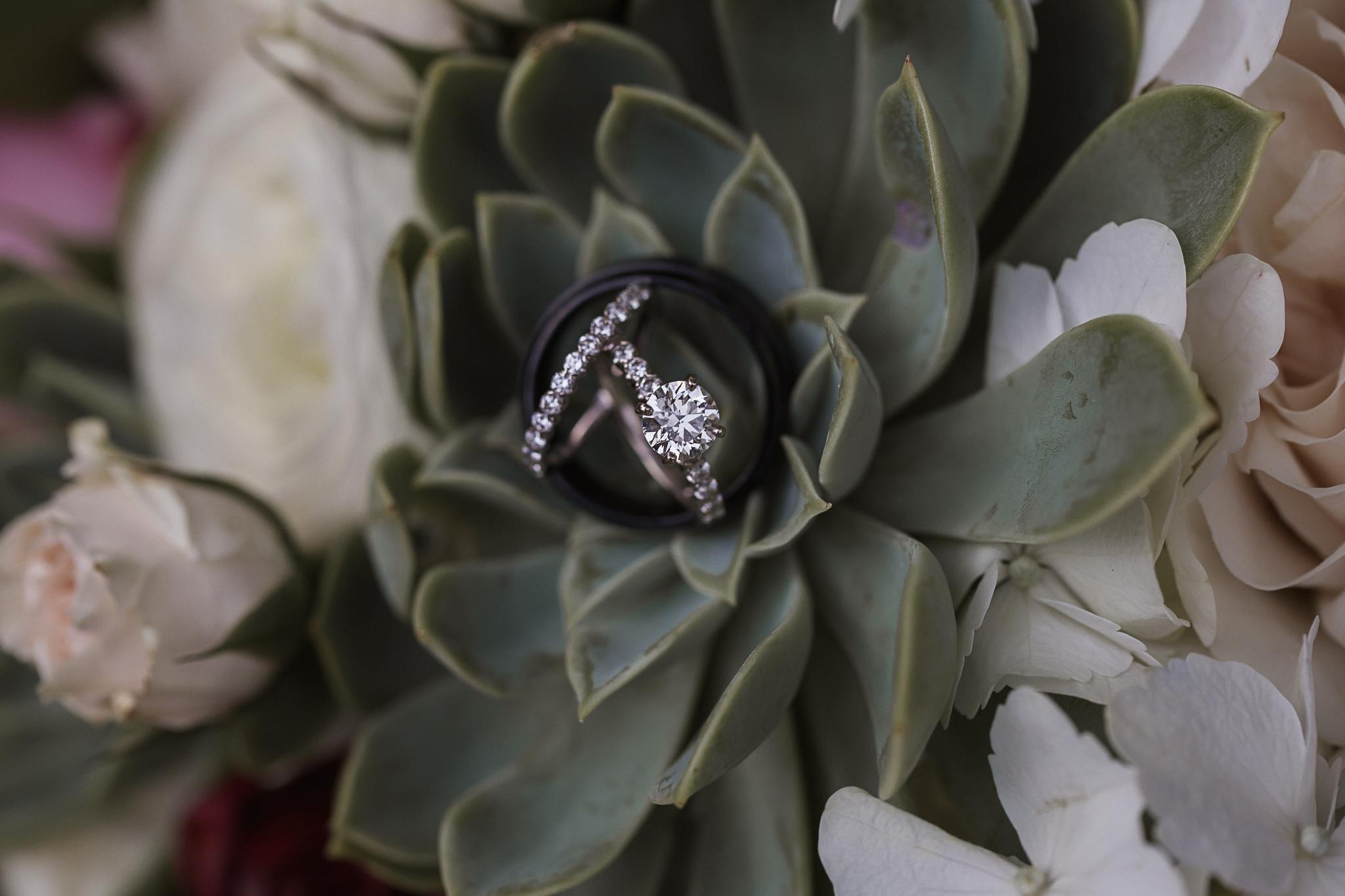 Wedding Rings Charlotte Wedding Photographer