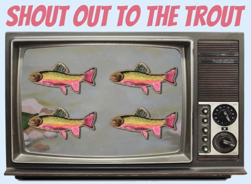 Website-tv-trout.jpg