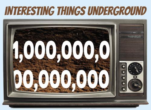 Website-tv-interestingthings.jpg