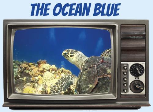 Website-tv-oceanblue.jpg