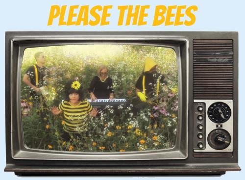 Website-tv-bees.jpg
