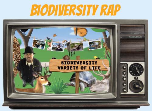 Website-tv-biodiversity-rap.jpg