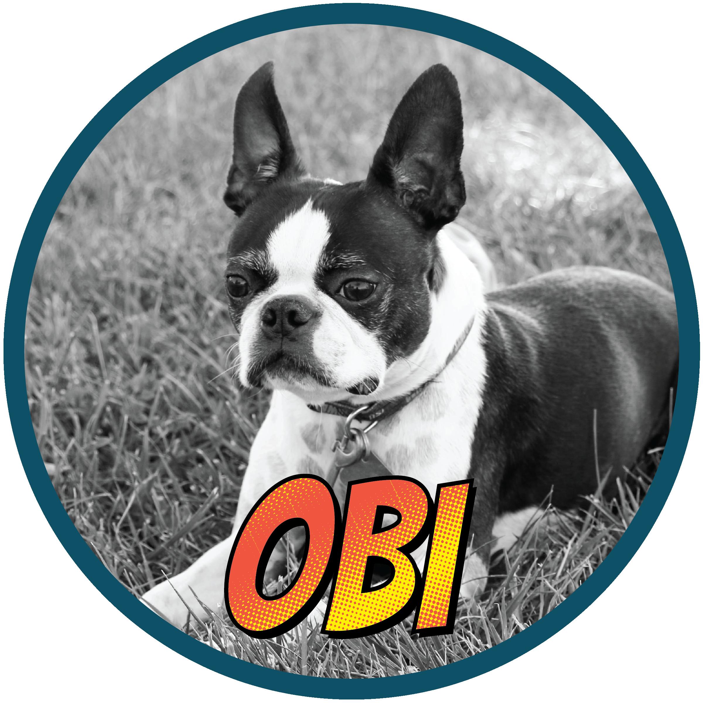 Obi(profile)-01.png