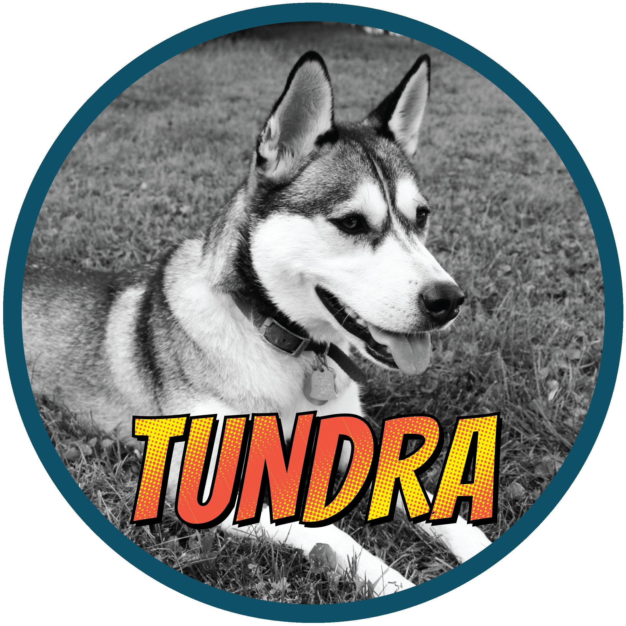 Tundra(profile)-01.png