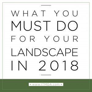 3-things-to-do-in-2018-01-300x300.jpg