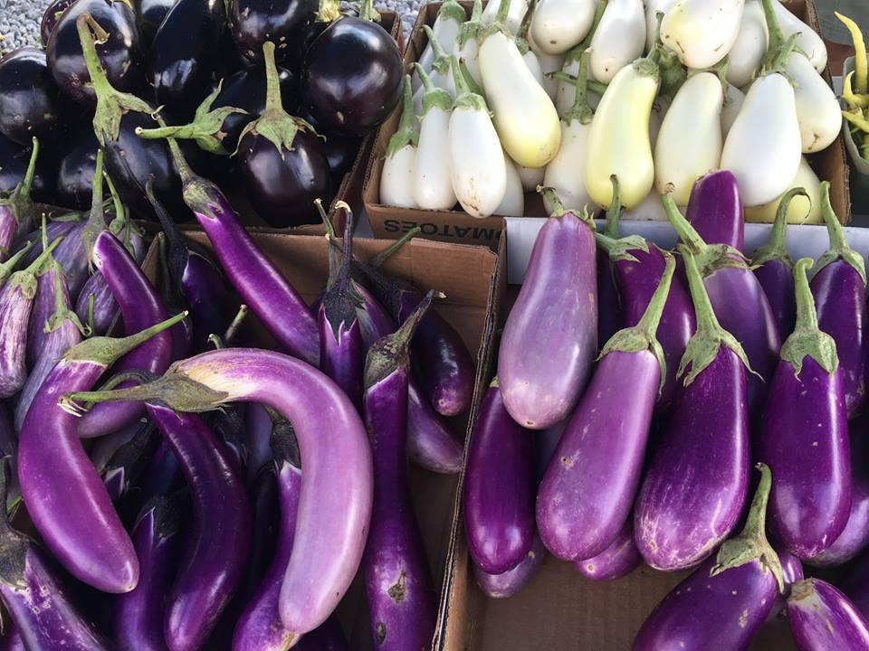 Farmers market 4.jpg