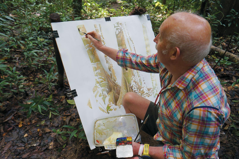 Tony Foster painting in the rainforest near Paku Falls, Mulu, Borneo, February 2015. Photo by Alison Pritchard
