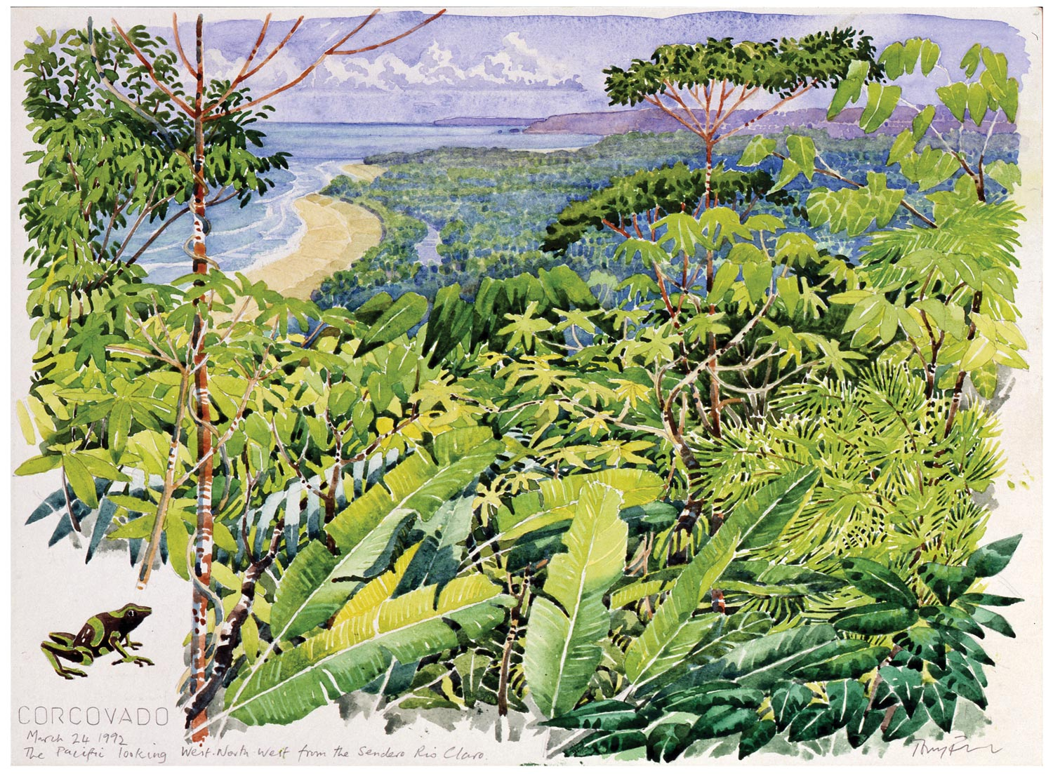 Tony Foster,  Corcovado: March 24, 1992: The Pacific Looking West North West from the Sendero Rio Claro , 1992 | Watercolor and graphite on paper | 10 x 13 5/8 in. | 1991.1.17