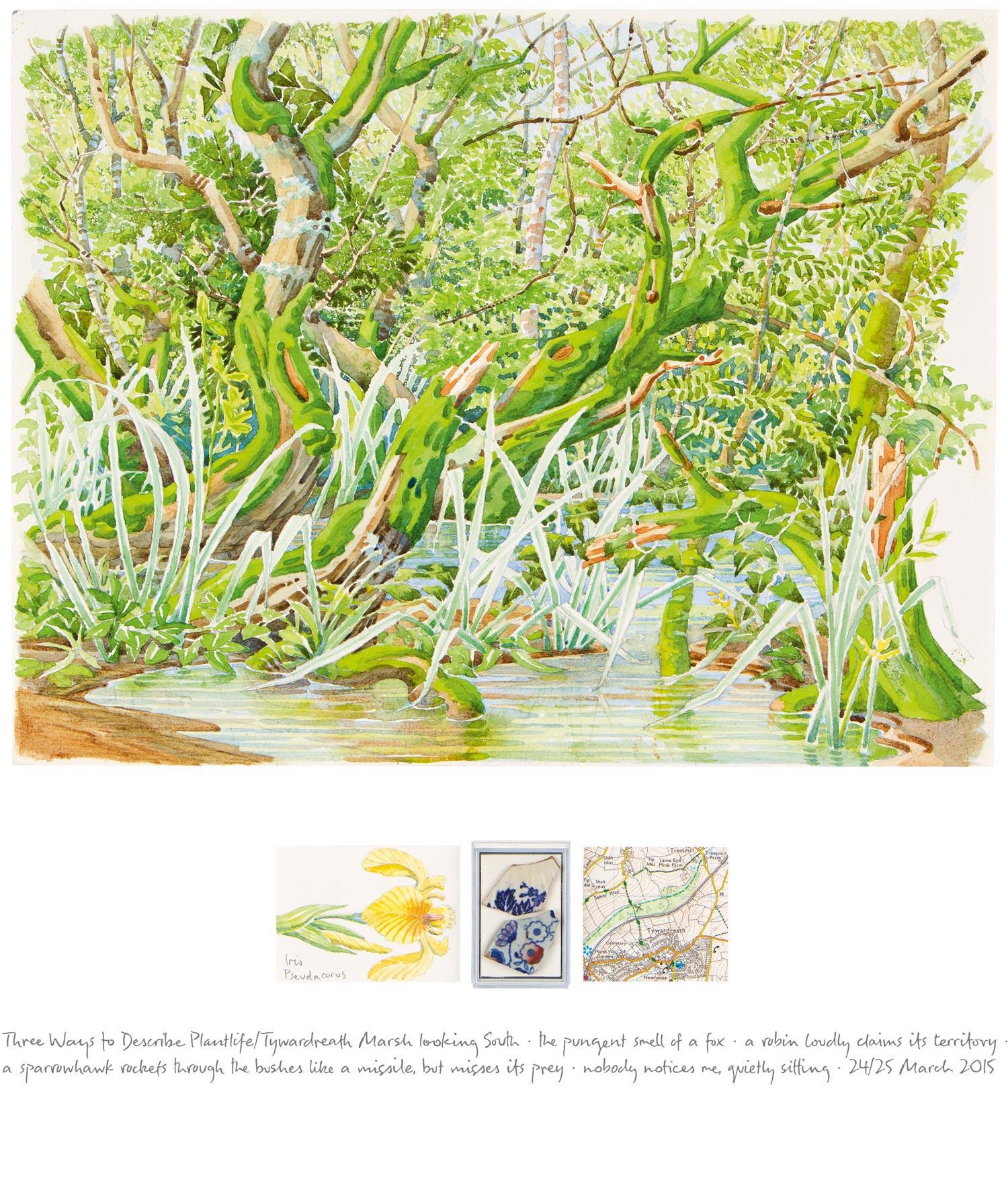Tony Foster ,  Three Ways to Describe Plantlife / Three Wildlife Observations—Tywardreath Marsh Looking South , 2015