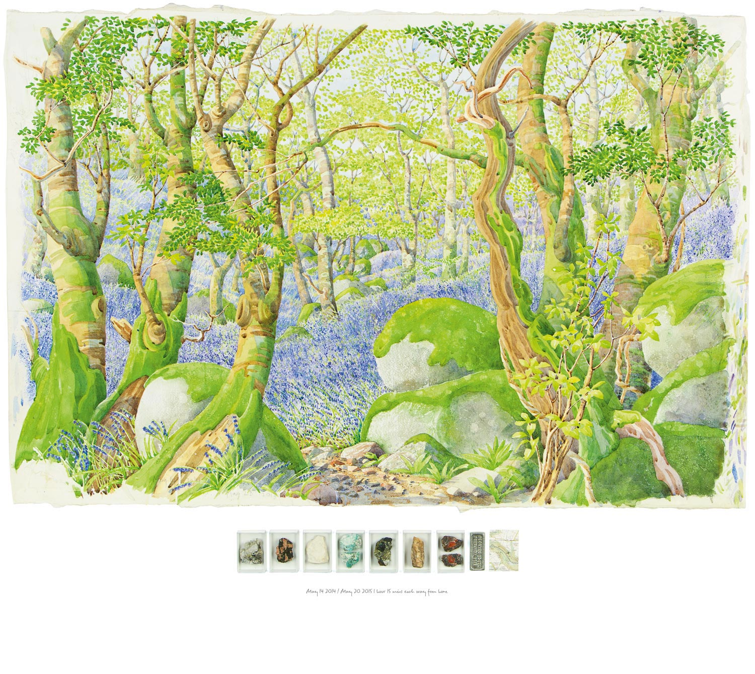 Tony Foster ,  Bluebells—Looking WNW near the Top of Luxulyan Valley , 2015