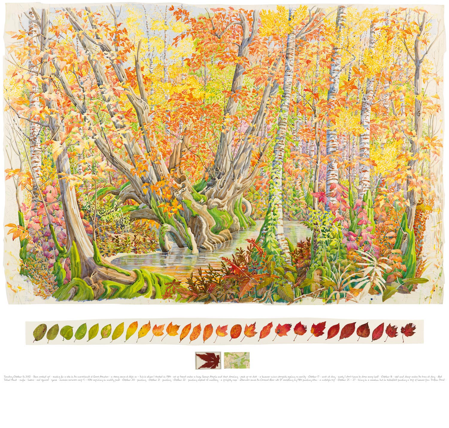 Tony Foster,  Fall Colour in Great Meadow, Concord , 2012 | Watercolor and graphite on paper, maple leaf, acrylic box, map |36 x 52 3/4 in. / 3 3/8 x 47 5/8 in. / 2 1/8 x 6 1/2 in.