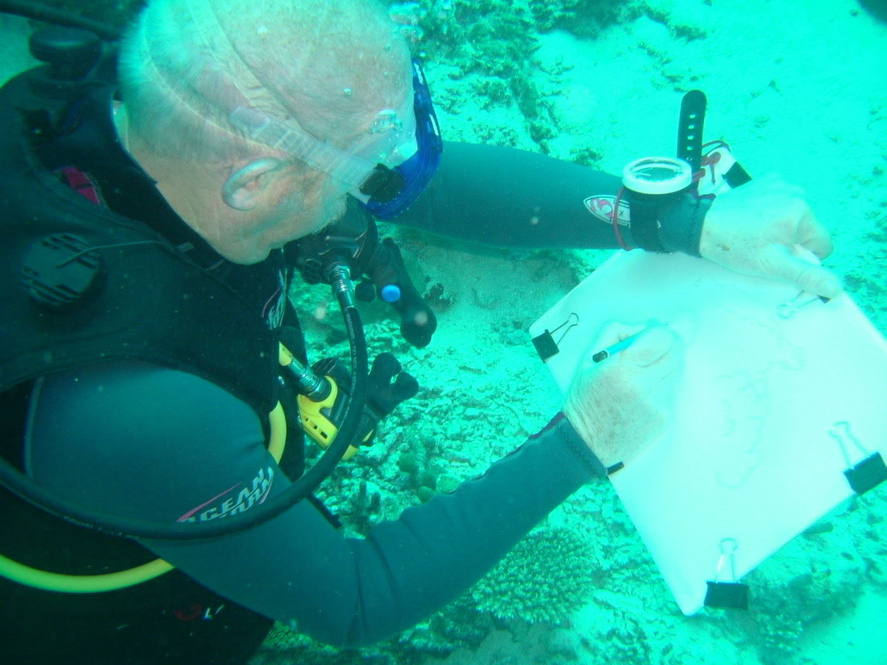 Tony Foster drawing underwater in the Maldives, 2007. Photo by Glenn Parrot. Courtesy of Foster Art & Wilderness Foundation.
