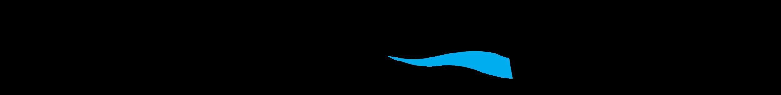 airmada logo (black).png