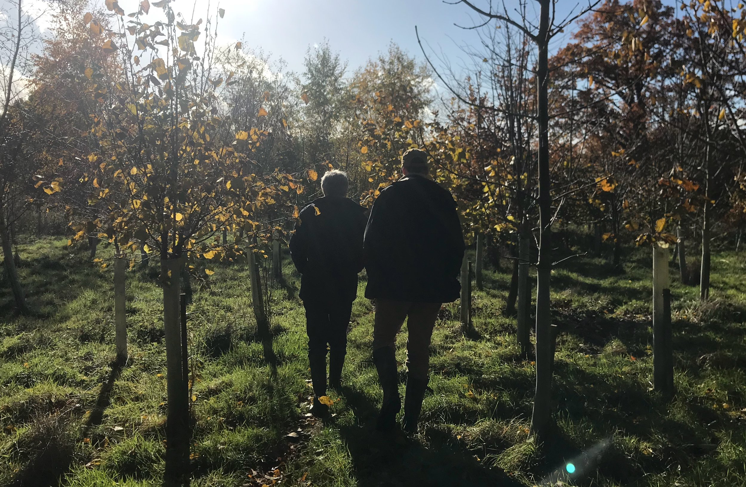 Peter and Patrick walking out among the 1,500 trees planted by Peter and his wife as a rewilding project.