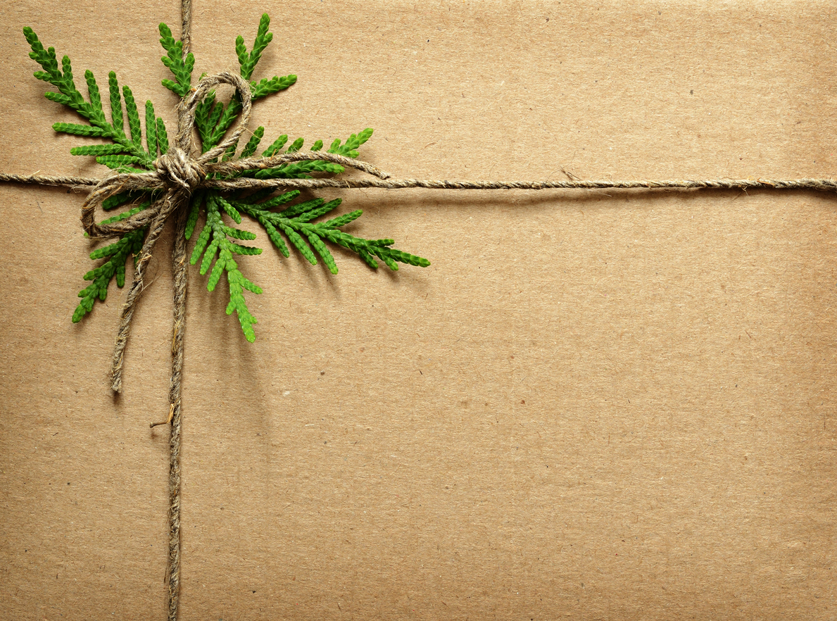 """Holiday """"Nice"""" List - 6 eco-friendly brands to cross off everyone on your list."""