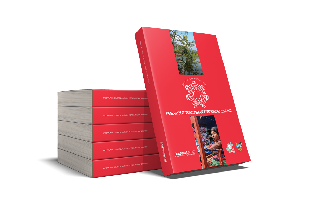 076-6x9-Stacked-Book-Promo-Huejutla.png