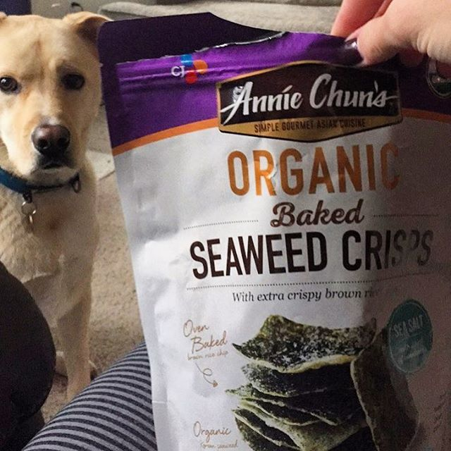 Healthy Costco find! These organic seaweed crisps are a good snack, nice and crunchy and salty! . Did you know that seaweed has a high amount of iodine, which is often hard to find in other foods? 🌱 . As someone who is prone to thyroid imbalances and also doesn't consume traditional iodized tables salt (I use Himalayan pink salt) I try to eat some seaweed every so often to amp up my iodine intake. The taste can be a bit off-putting at first, but after eating seaweed products more and more regularly, I really don't mind the taste. . My pup Leo loves these too! 🐕 . Head to your local Costco and see if you can find 'em! . . . . . #notablynourished #wholefoodsdiet #paleoish #glutenfreemeals #grainfreeliving #grainfreemeals #dairyfreemeals #nontoxic #holistichealthcoach #paleotips #paleohacks #paleolife #nutrients #nutrientseeker #qualityoverquantity #qualityovercalories #dontcountmacros #wholesomefood #nutritioncoach #justeatrealfood #nutritionheals #donteatlikeanidiot #wellnessblog #sciencebasednutrition #vitaminsfromfood #seaweed #thyroidhealth #thyroidproblems