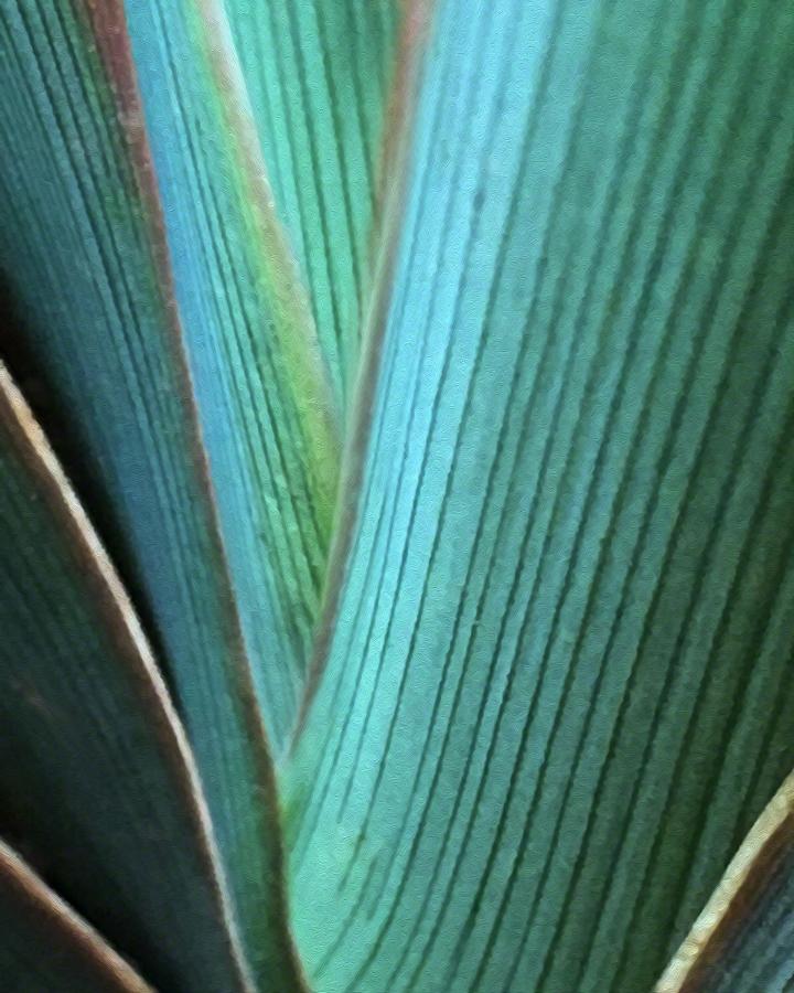 Blue Green - 16