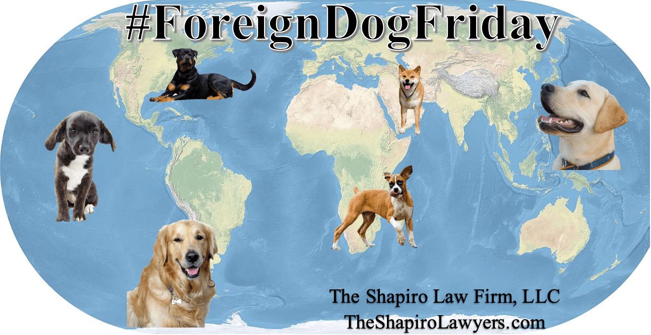 #ForeignDogFriday