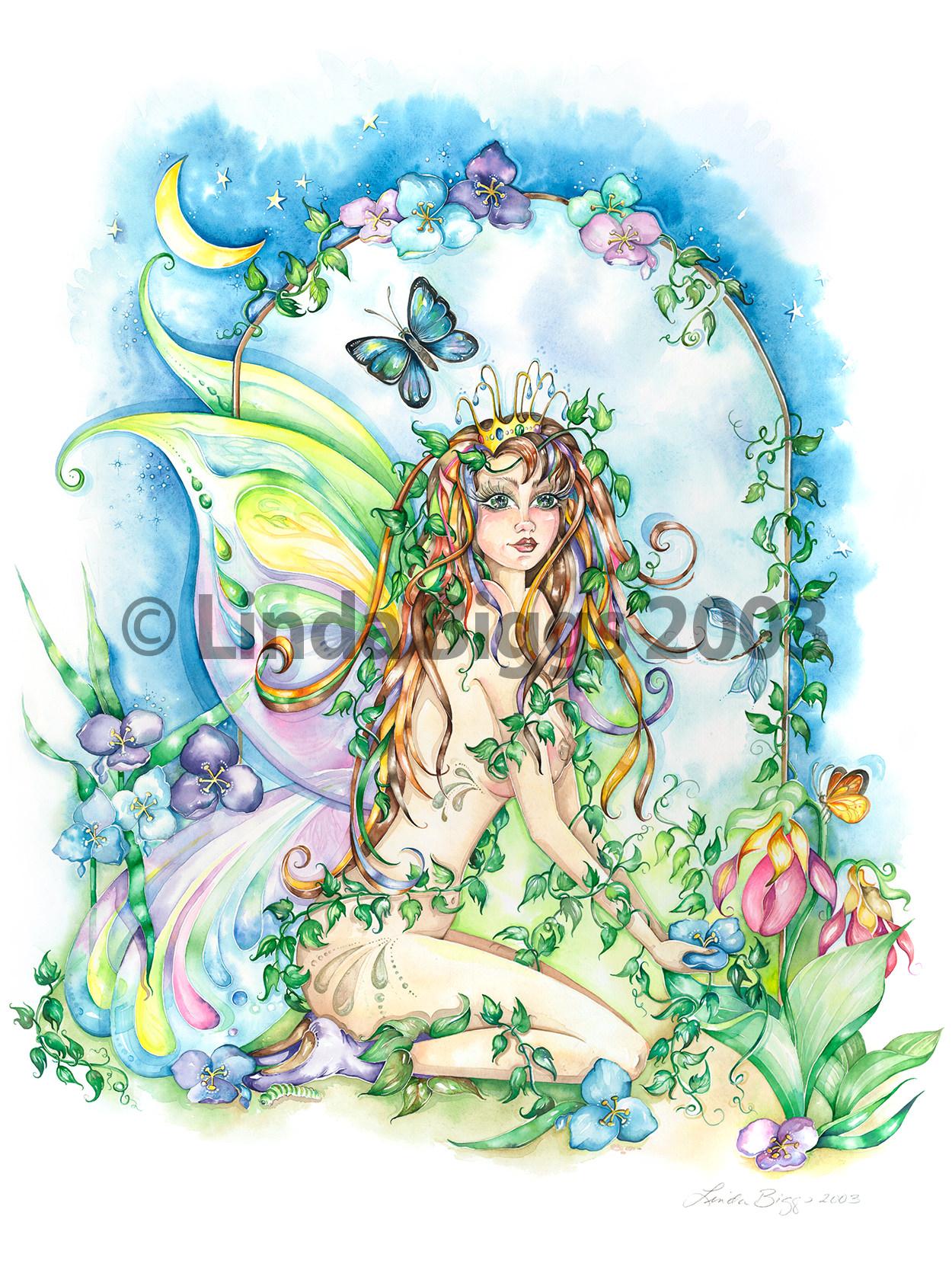 Moon Fairies Gift
