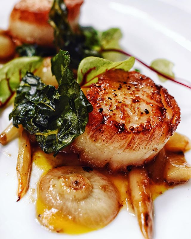 """Simply the best... better than all the rest💫 """"Seared Scallops"""" prepared to perfection🌟 #HFC"""