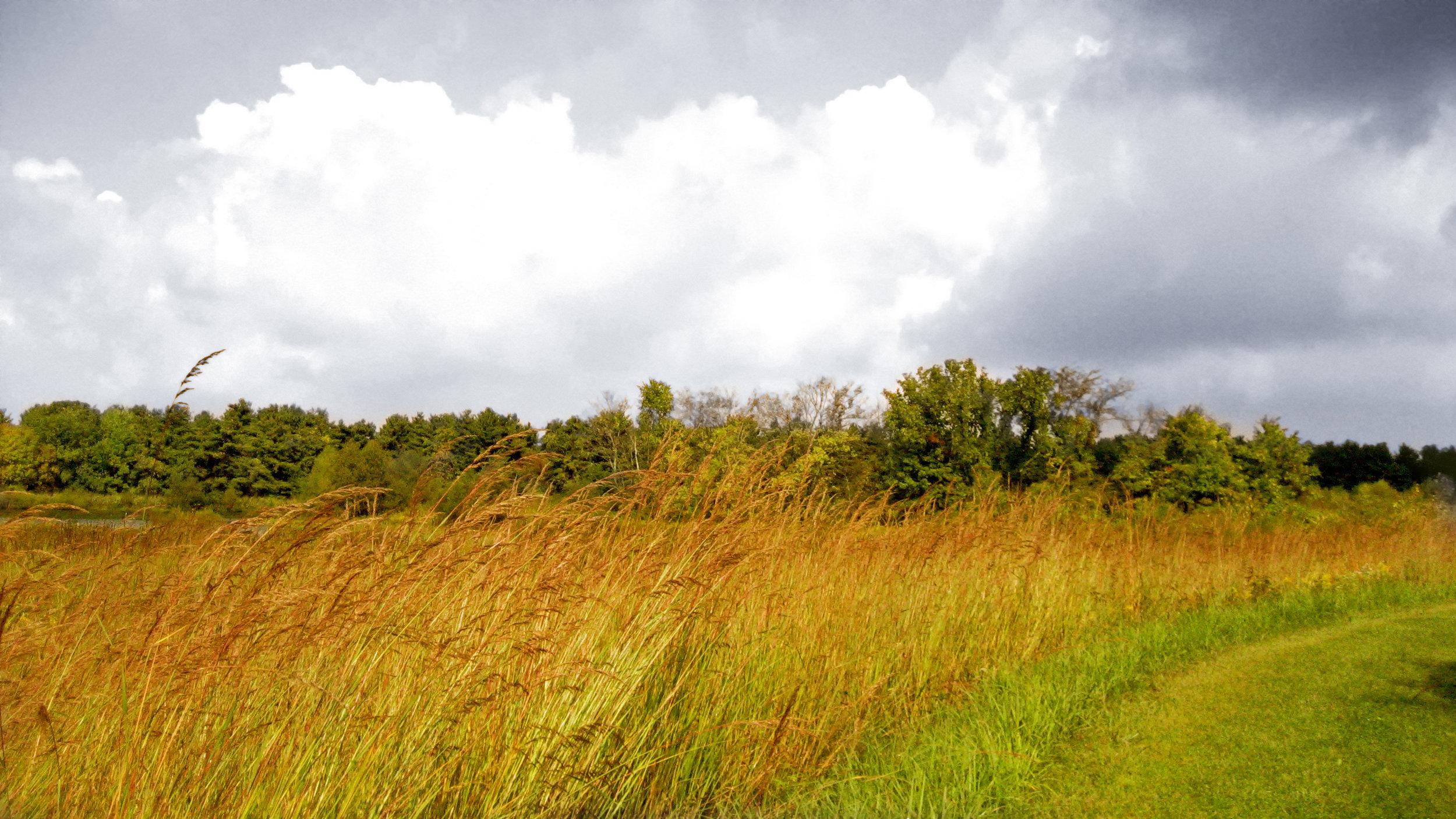 SLR_Kokomo Trail in September_SC.jpg