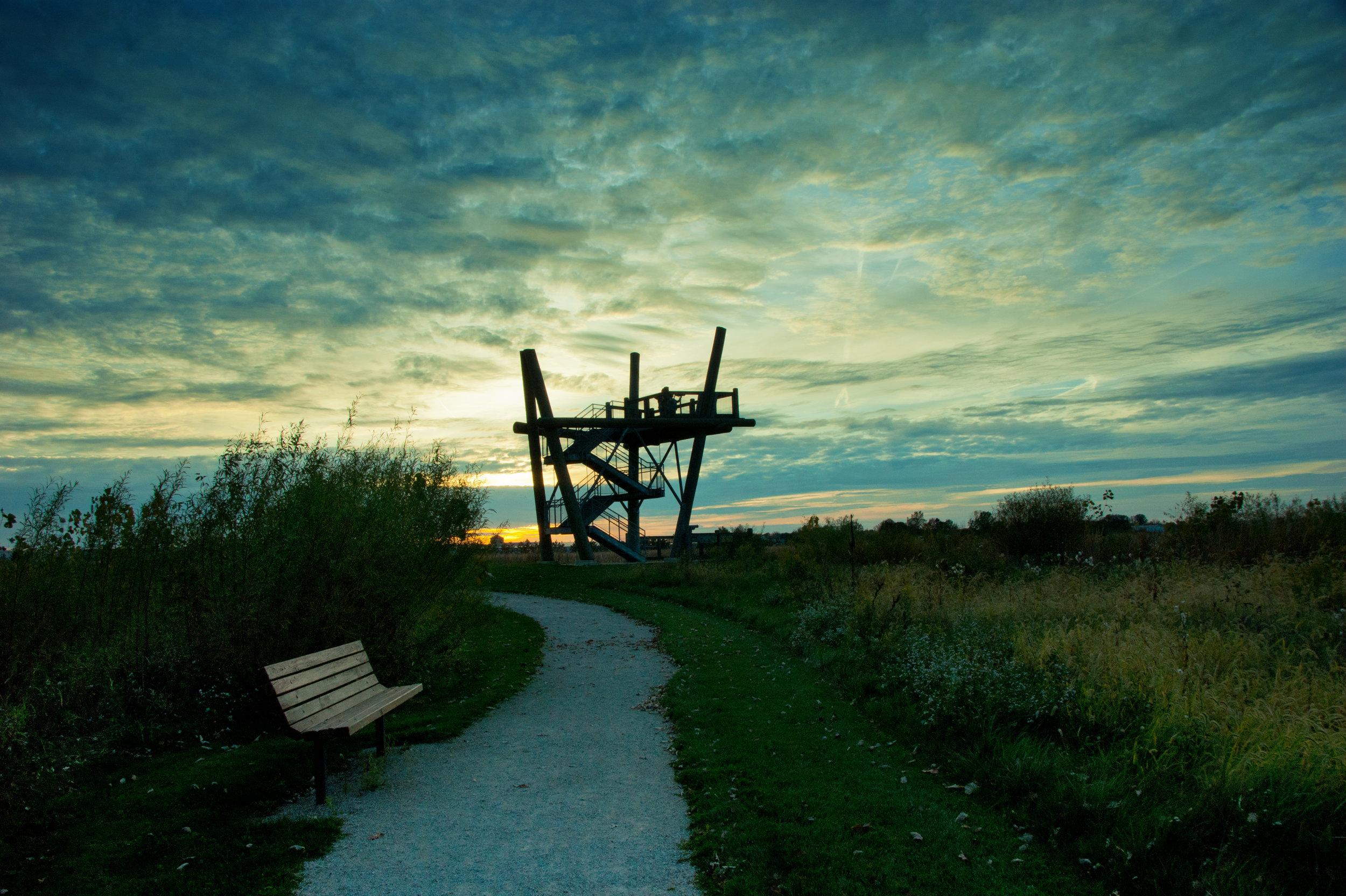 GLR_observation tower at wetlands_RR.jpg