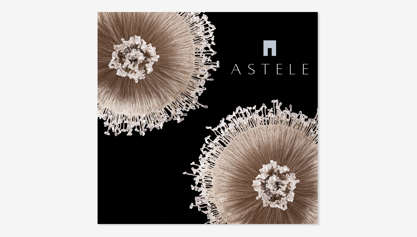 astele_brochure_cover.jpg