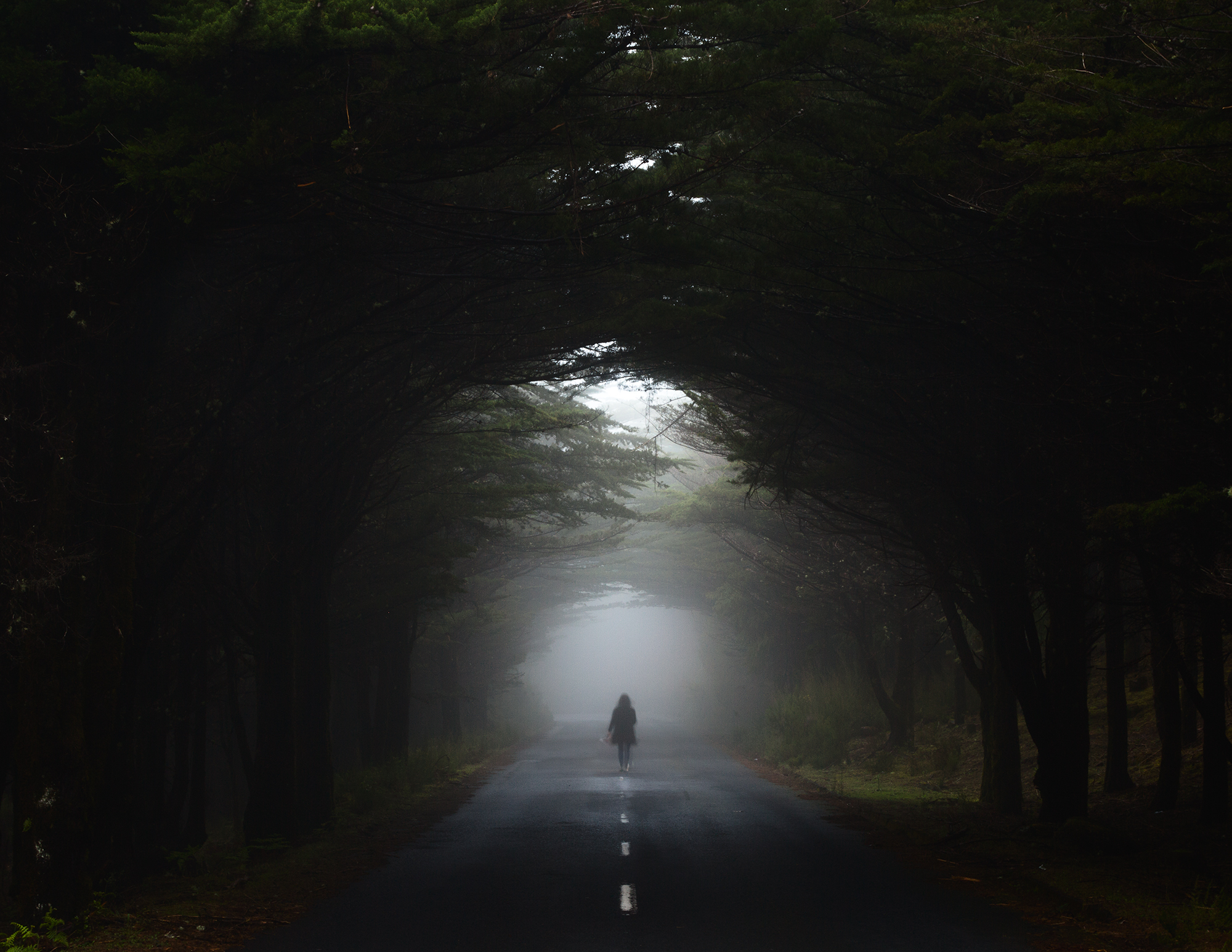 the_paths_we_take_nunoserrao.jpg